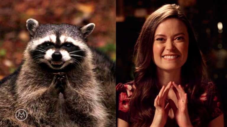 Summer Glau Imitates Popular Animal Memes