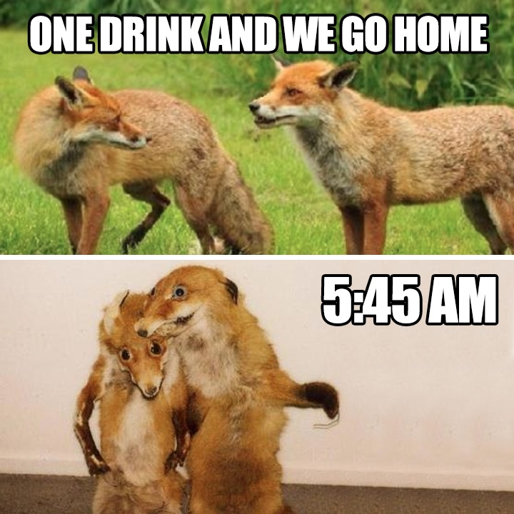 Just one drink and we go home...