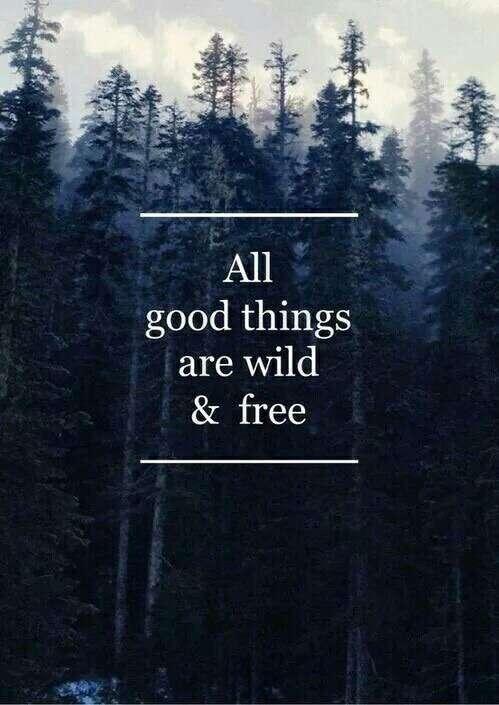 Good Things... 🍁🍁🍁