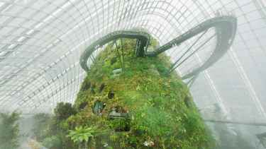 Cloud Forrest - Gardens by the Bay in Singapore