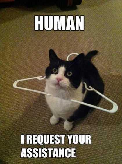 No. It's not a hanger.