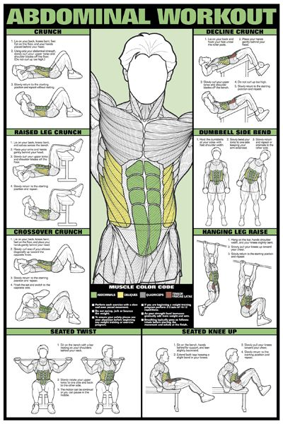 Visual Guide For The Right Exercise For Each Of Your Muscles