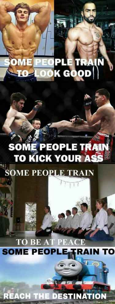 The reasons why people train... 🚂