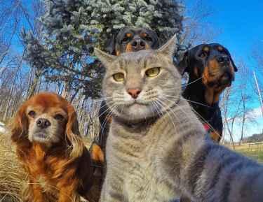 Selfie with the crew...
