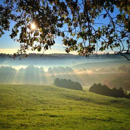 #Photography: Misty Sunrise