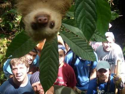#Funny Sloth #Photobomb