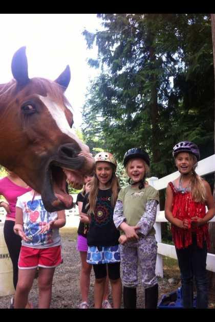 #Funny Horse #Photobomb