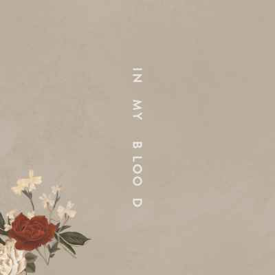 Shawn Mendes - In My Blood - #MySpotify