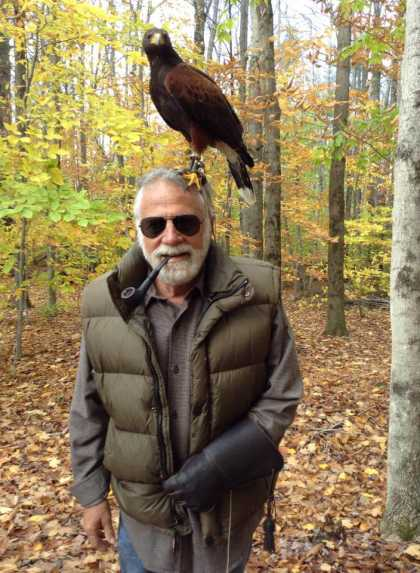 I'm pretty sure /Animals would love #hawks