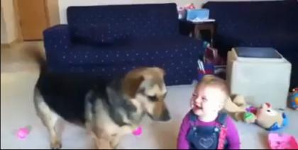 #Dogs + Baby + Bubbles = #Happiness