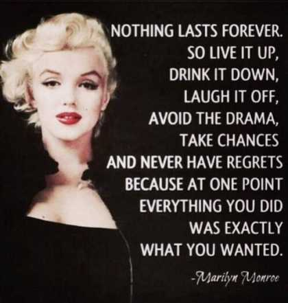 Live it up... Drink it down... Laugh it off...