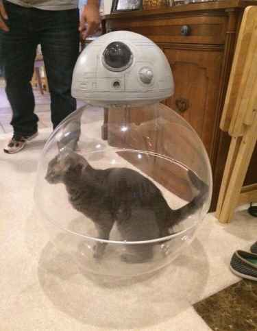 How BB8 really works....