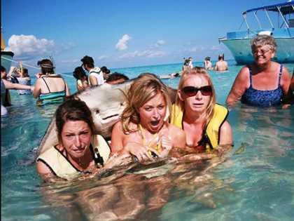 #Funny Stingray #Photobomb
